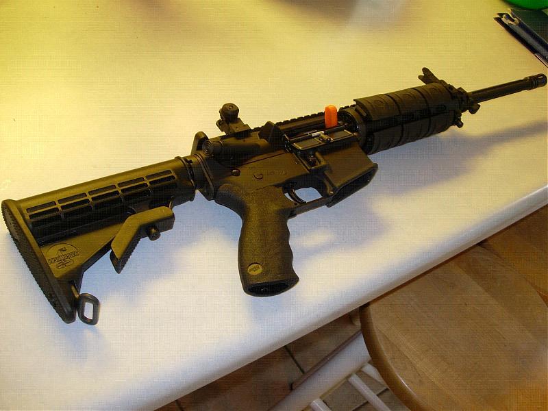 Which AR-15 to buy?-dscn1544.jpg