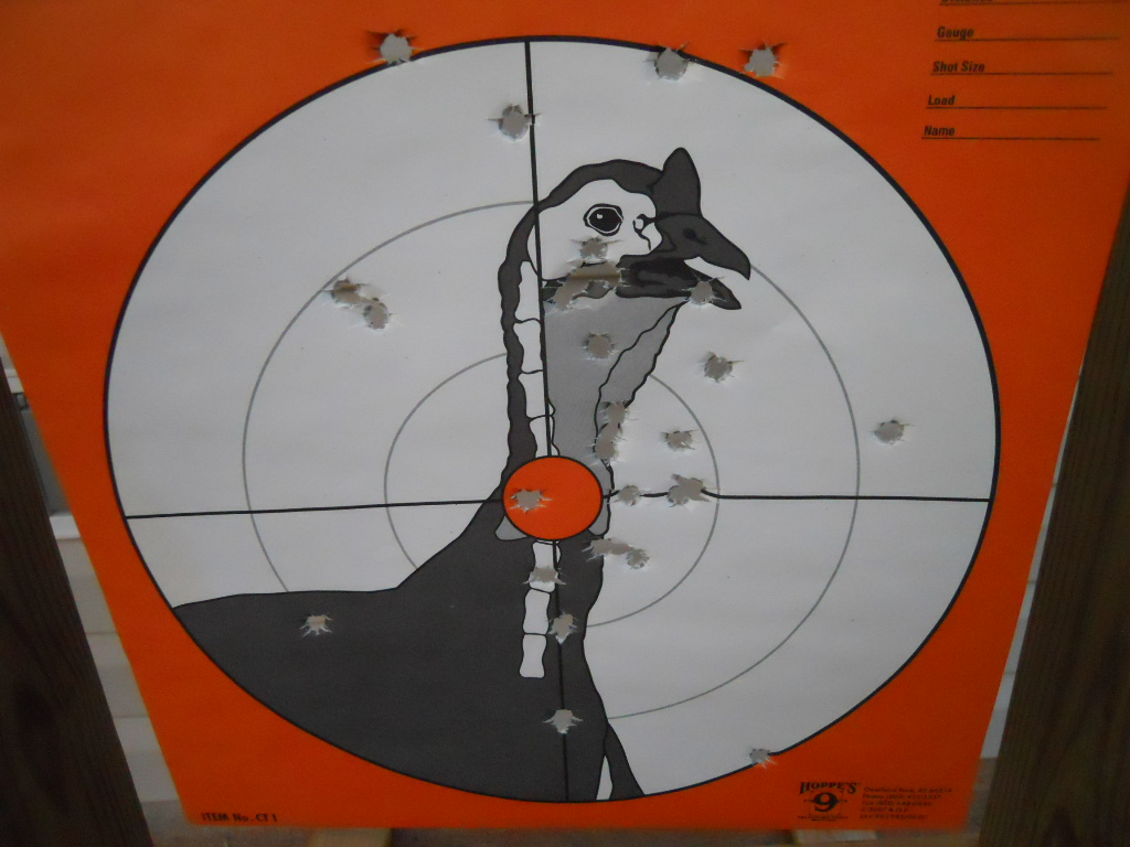First rounds through my new Glock 19 at my range... with Pics!-dscn2127.jpg