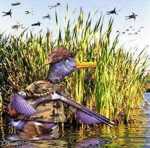 What Ducks Dream-duck-dreams.jpg