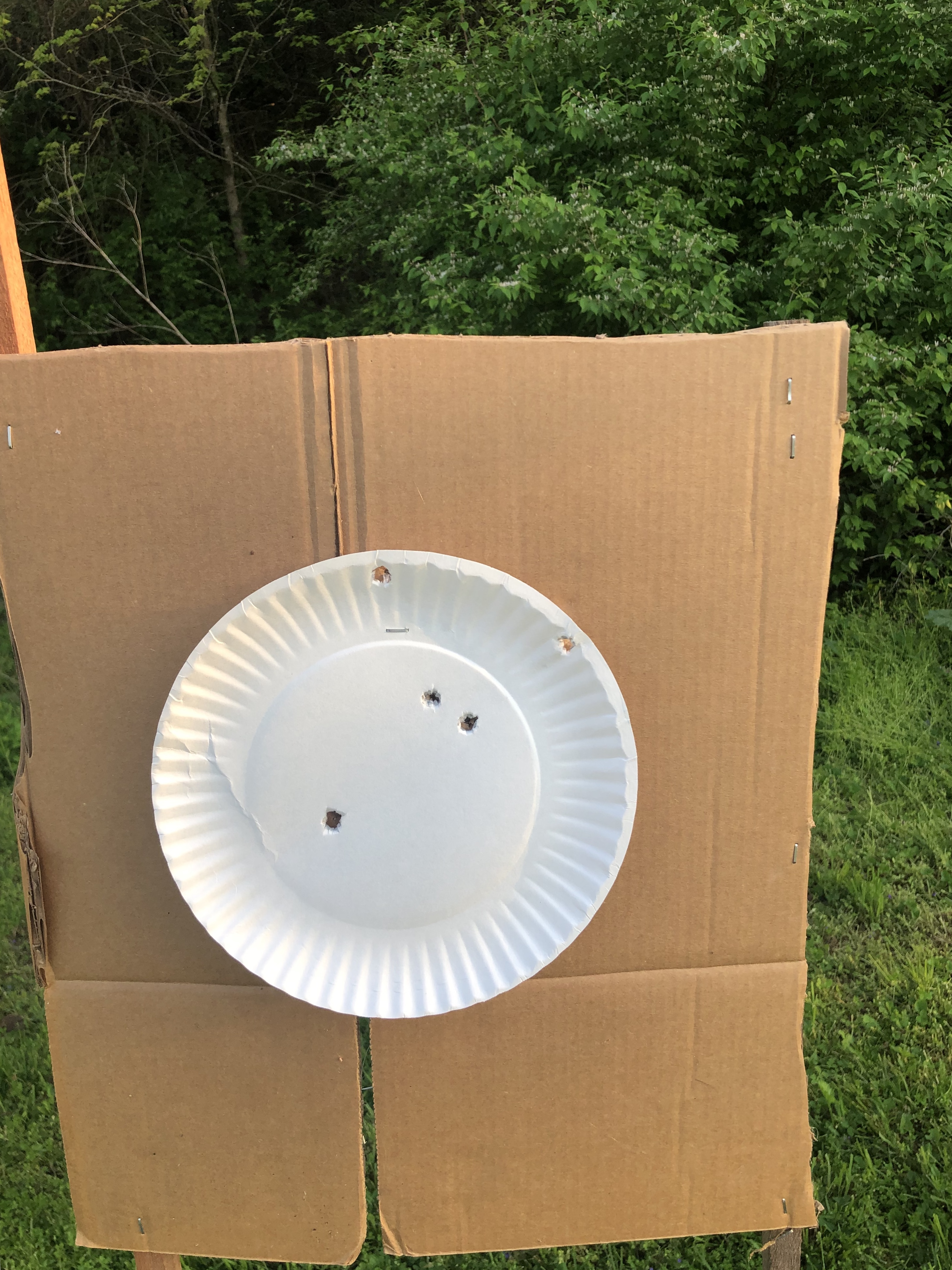 Draw practice from concealed at 12 feet, 2 threats, front sight focus-ee7a3513-429c-478f-87d7-b8dd93e32c1d.jpeg