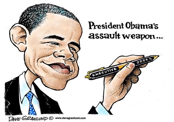 FUN:  Favorite cartoon images about gun control-exec-orders.jpg
