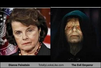 Dianne Feinstein To Introduce Assault Weapons Ban On First Day Of Congress-feinswine_zpse38cf3dd.jpg