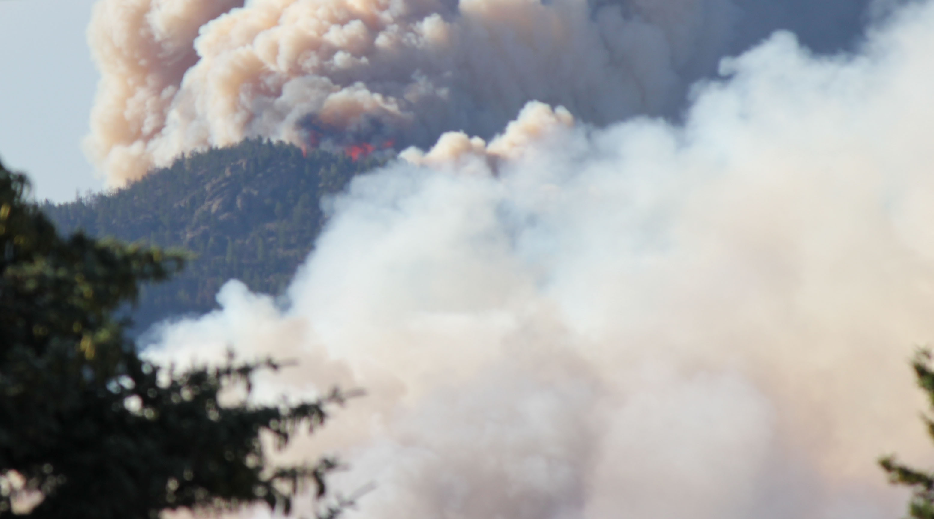 Wildfires, who is being affected?-fire4.jpg