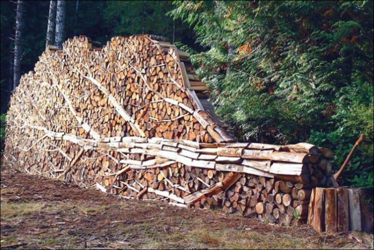 Properly stack your firewood for winter-firewood3.jpg