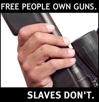 I collect Pro Second Amendment posters, so....-free-people.jpg