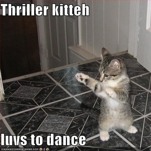 A purrfectly fun thread-funny-pictures-thriller-kitten.jpg