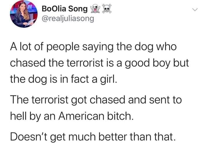 Hero Dog going to the White House.-good-girl.png