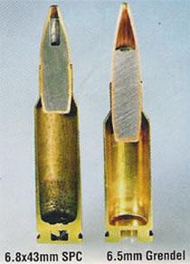 Barnes 5 56x45 77gr TSX for deer hunting?