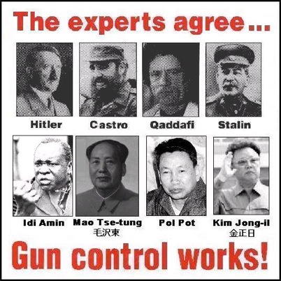 Who commits mass murder-gun-control-experts.jpg
