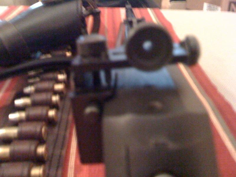 Lever-Gun Questions-gun2.jpg