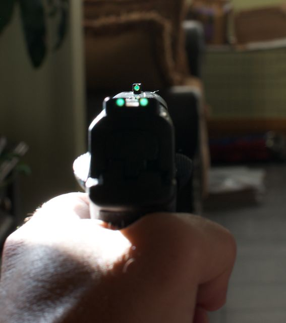 TruGlo Sights; maybe the answer-gun7.jpg