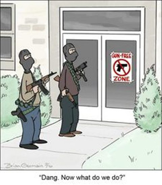 Banks... Federal Institutions?-gunfreezonecartoon.jpg