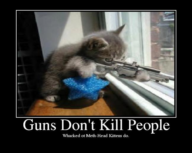 Darn kid, won't follow the 4 gun rules.-gunsdontkillpeople.jpg
