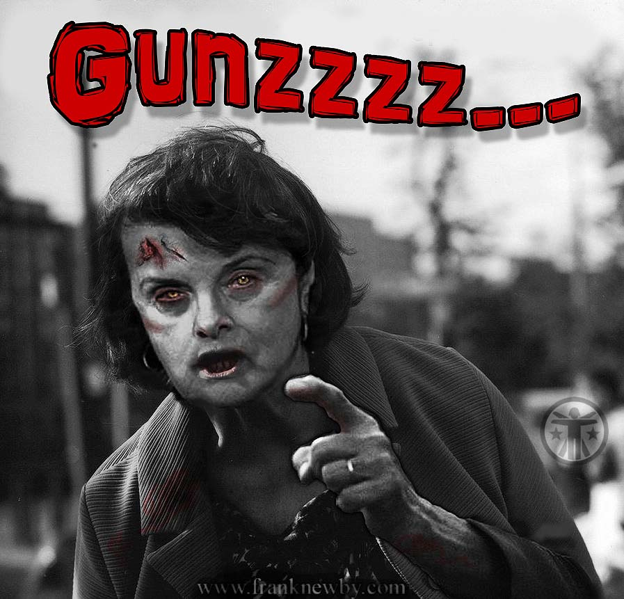 I collect Pro Second Amendment posters, so....-gunzzz.jpg