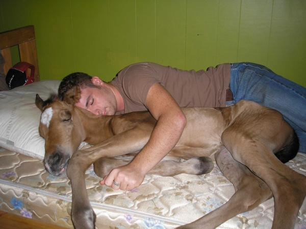 Pic association thread-horse-guy-bed-spoon-hugs-12707389061.jpg