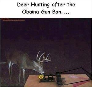 Deer Hunting after Weapons ban-image.jpg