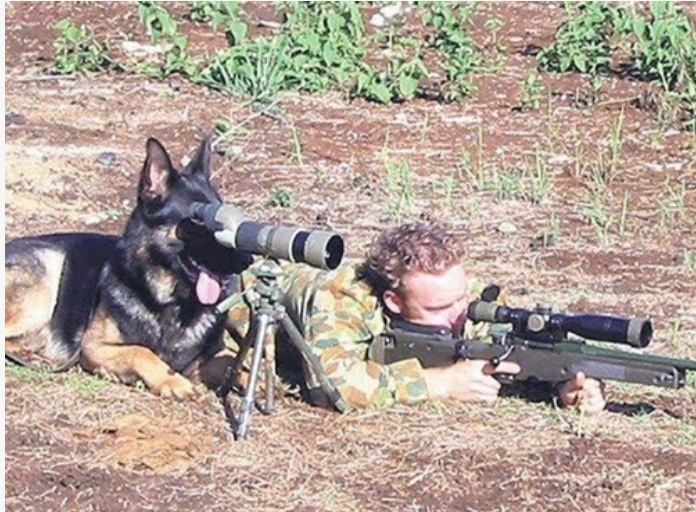 Every Sniper needs a good spotter-image.jpg