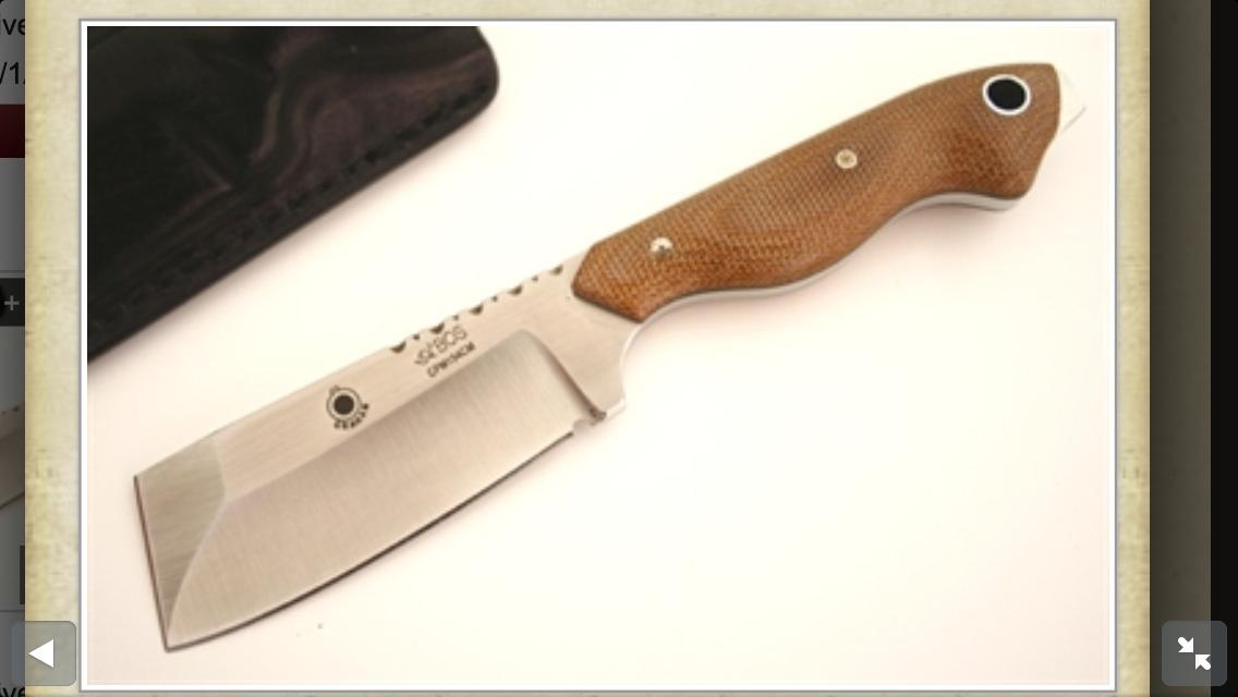 Blade of Choice-image.jpg
