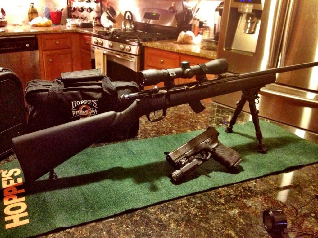 New .22 Rifle-imageuploadedbytapatalk1356671412.401136.jpg