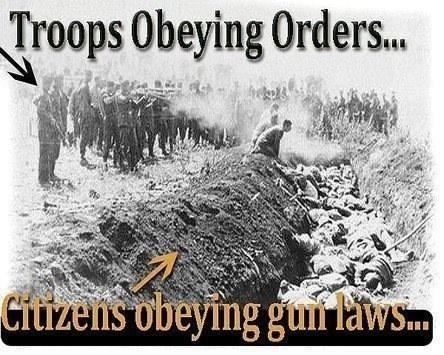 "So , what ""other"" guns may you lose if the ban passed.....-imageuploadedbytapatalk1356980715.244358.jpg"