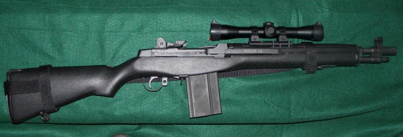 assault rifle vs battle rifle-img_0047.jpg