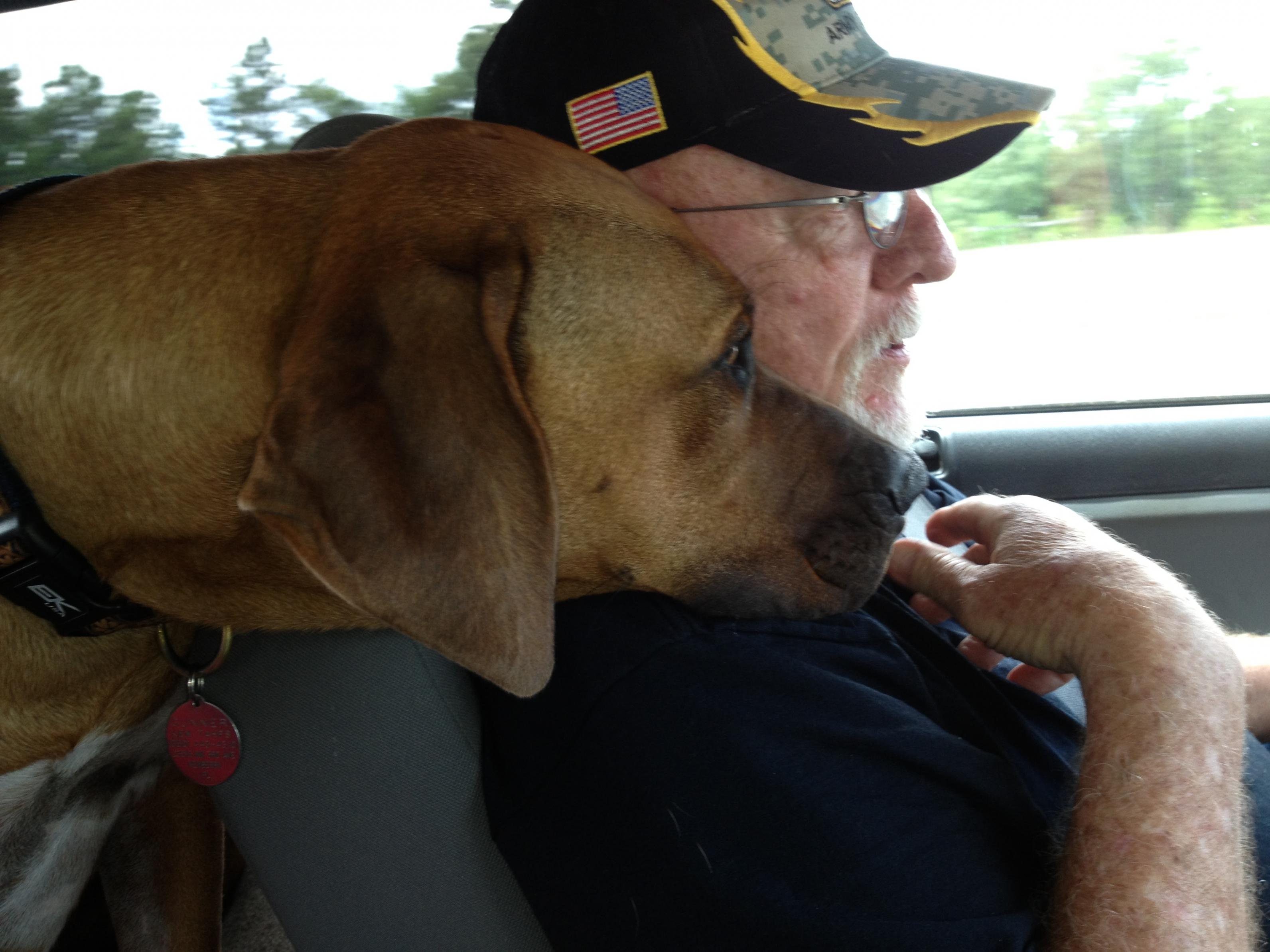 Canine Friends and Travel...-img_0147.jpg