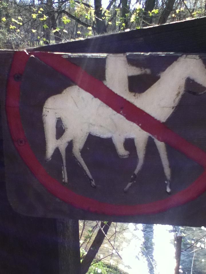 No Headless Horsemen???-img_0339.jpg