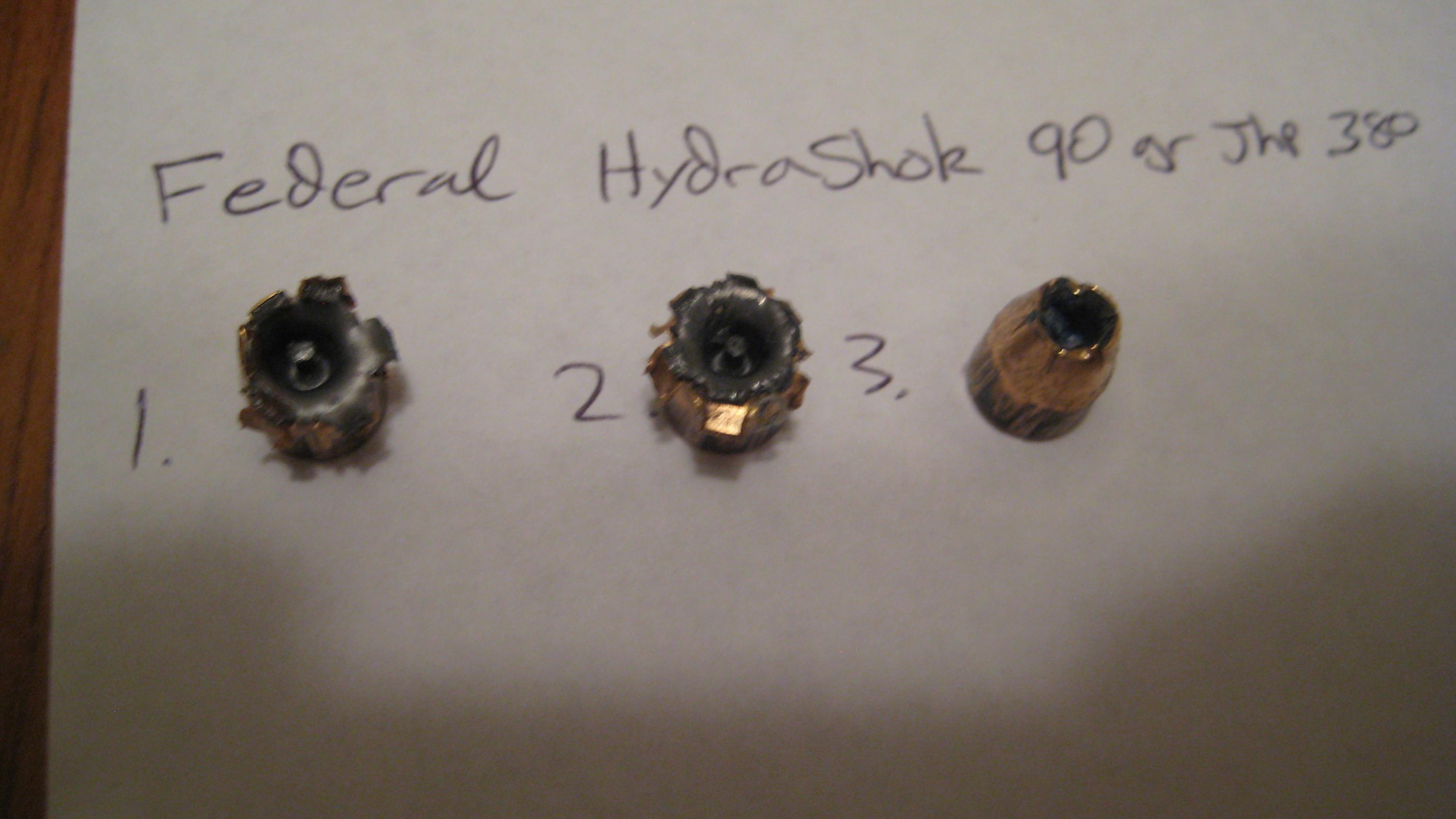 .380 Ammo Tested-img_0671.jpg