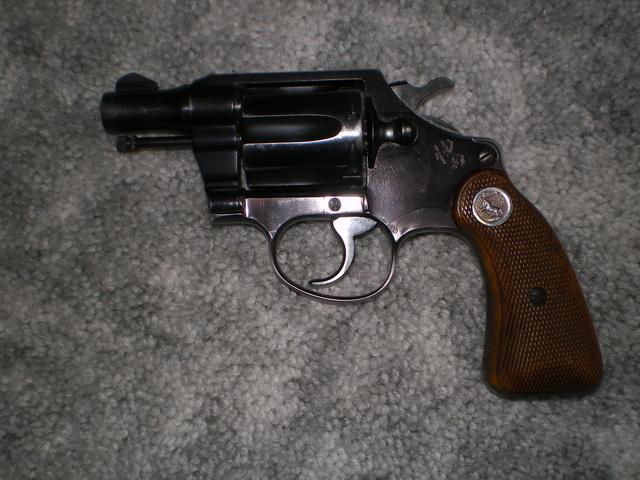 My first Colt-imgp1664.jpg