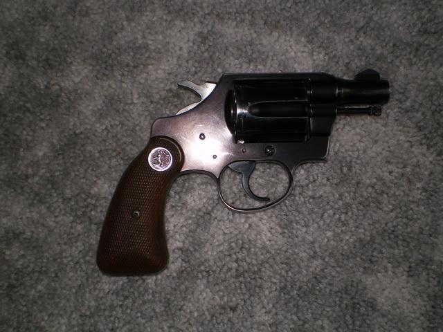 My first Colt-imgp1665.jpg