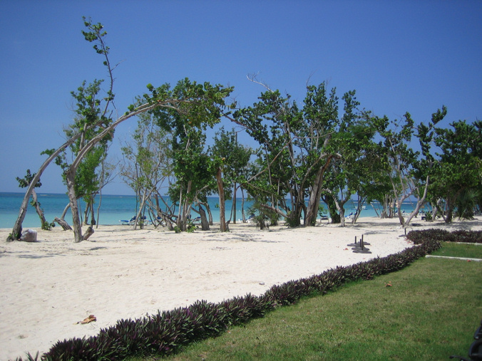 Pictures from abroad!(and elsewhere, Dial up beware)-jamaica_beach.jpg