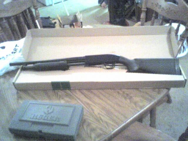 New Guns!!!-joeys-guns.jpg