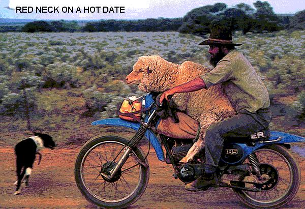How hillbillies get dates-redneck.jpg