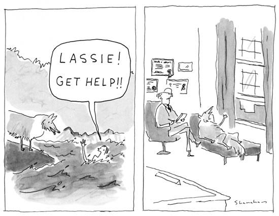Lassie! Get help!!!-lassie.jpg