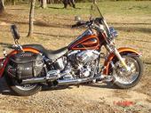 guns and bikes-m_8c733fc6e8fc4ecaa033460dc905a351.jpg