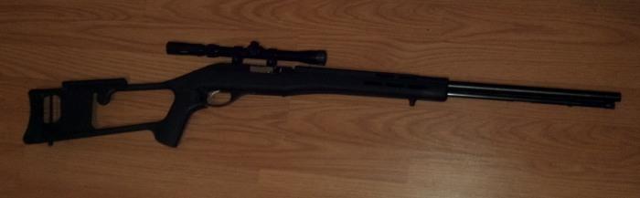 Help with cheap 22 rifle-marlin60_2.jpg