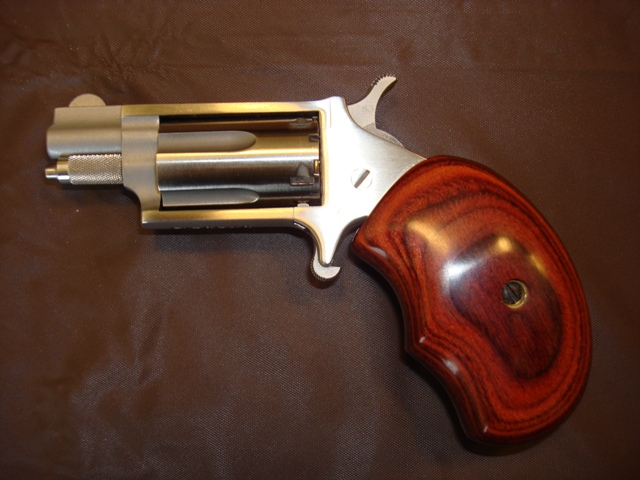 NAA .22LR with holster grip-naa-22-mag.jpg