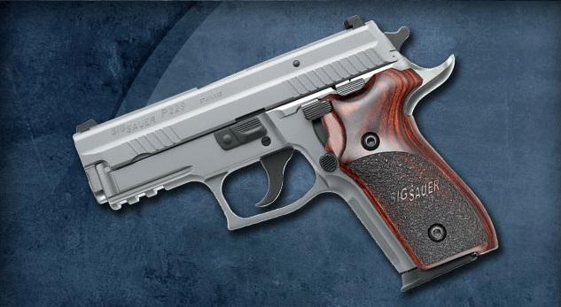 SIG Sauer P229R .40 S&W ammo question-p229-elite.jpg