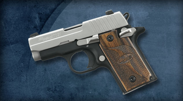 Gun Show and Money to Spend-p238-sas-detail.jpg