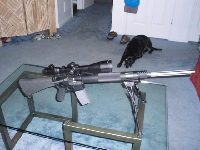 My new AR!-p8010061.jpg
