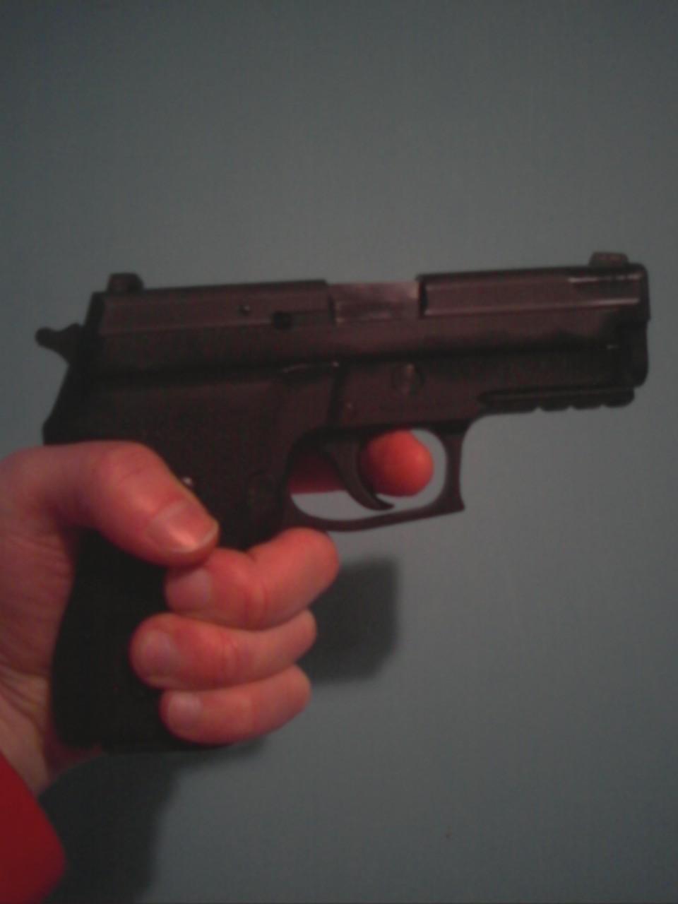 Sig P229 elite Dark-p_00250.jpg