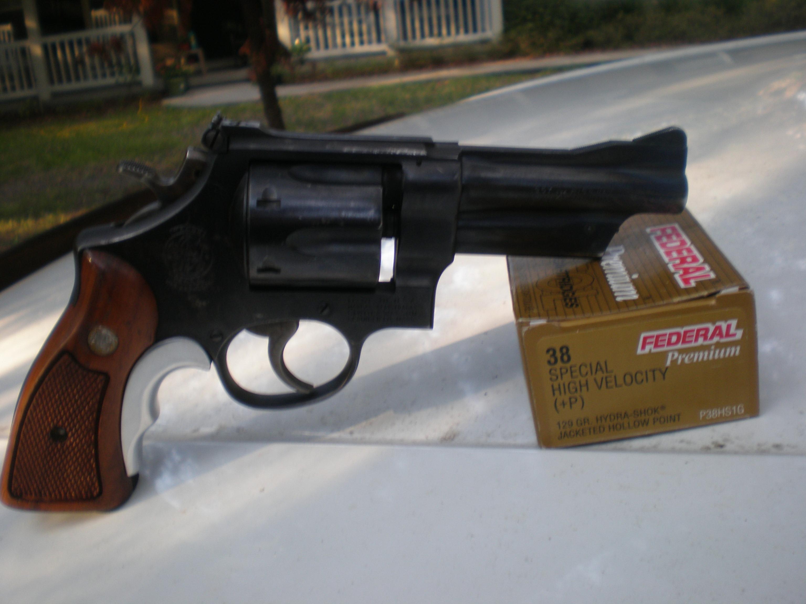 """The """"Fun Handgun"""" Photo Thread-pa100065.jpg"""