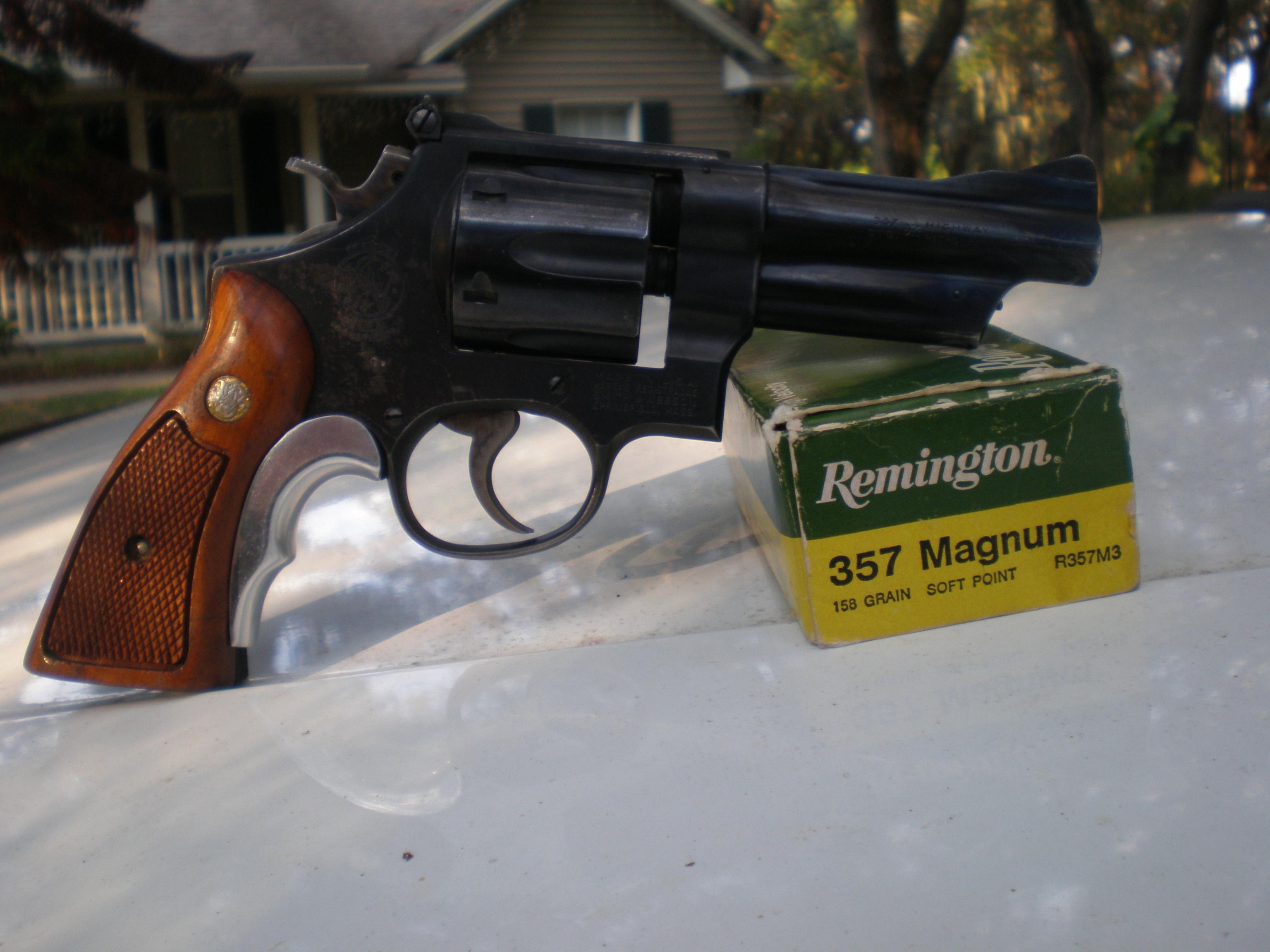 """The """"Fun Handgun"""" Photo Thread-pa100066.jpg"""