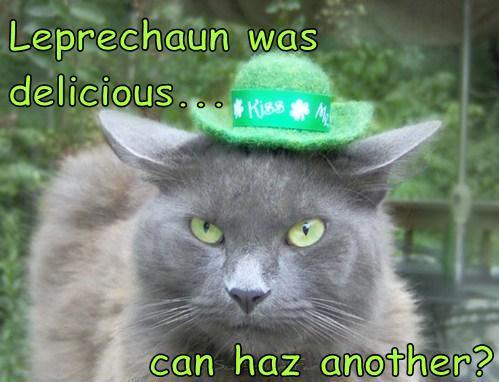 Happy St. Patrick's Day-pat-cat.jpg