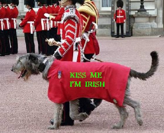 Happy St. Patrick's Day-pat-dog.jpg