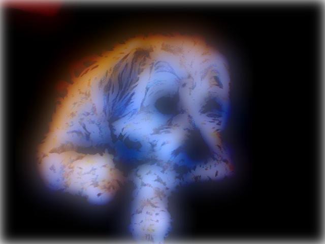 Critter pics / Pet Thread: Dial Up Beware-photo-16.jpg