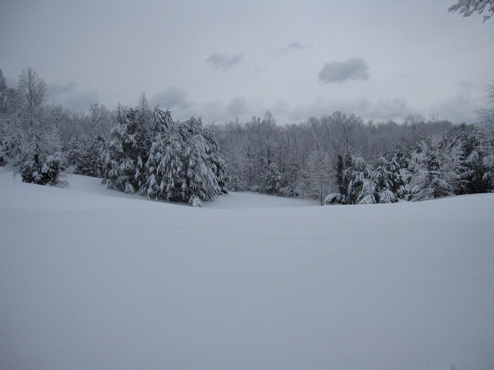 Snow?-picture-173-3-.jpg