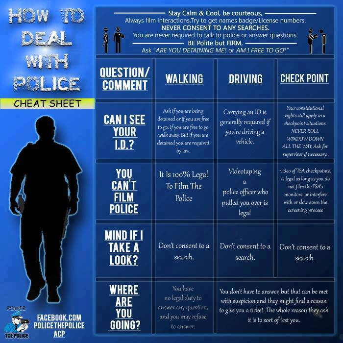 Police interactions in chart form-police-interactions.jpg