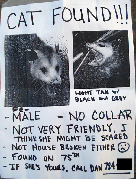 Lost and Found-possum_poster.jpg