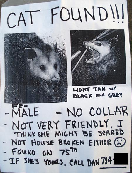 Lost and Found-possum_poster.jpg